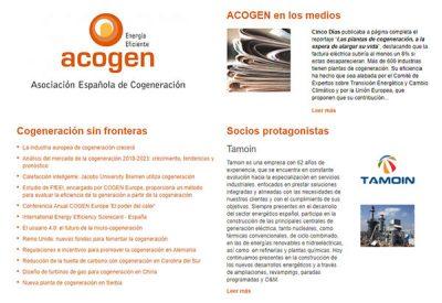 Cogeneración, Tamoin se asocia a Acogen
