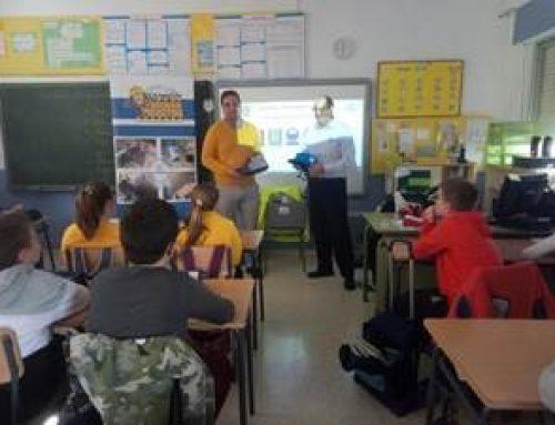 TAMOIN | PREVENCIÓN DE RIESGOS LABORALES: APRENDIENDO A PREVENIR